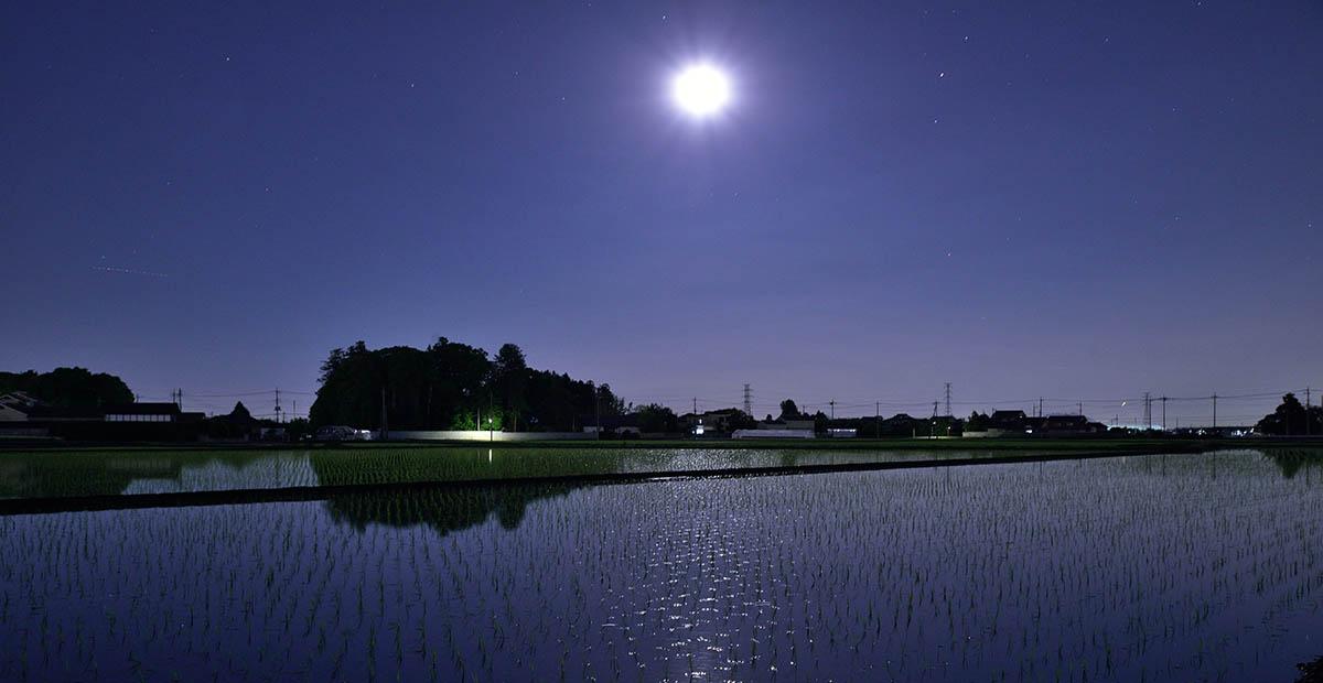 夜の吉田村