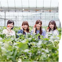 農業体験・アクティビティ
